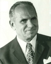 Max Petek
